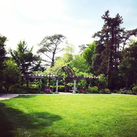 Ault Park Rose Garden