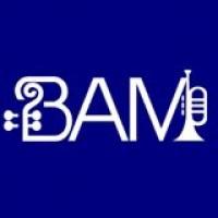Blue Ash Montgomery Symphony Orchestra