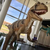 TCT Theatre Camp: Dino Rock -- Ages 6-7