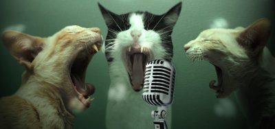 Fringe-A-Oke! - LATE NIGHT