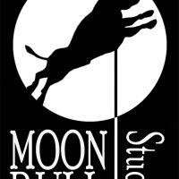 MoonBull Studio