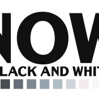 """""""Now in Black & White"""" - CALL TO ARTISTS"""