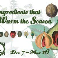 Ingredients that Warm the Season