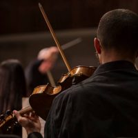 CCM Philharmonia: Strauss, Bartok and Beethoven