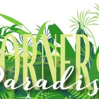 Corner of Paradise