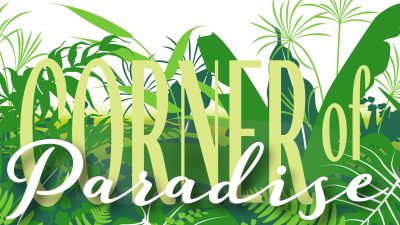 Corner of Paradise: A Synthesis of Art and Nature