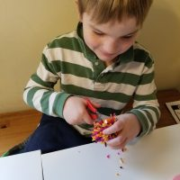 The Barn Art Camp: Fiber Fun Grades (1-2)
