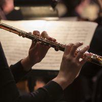CCM Chamber Orchestra: La Création du Monde