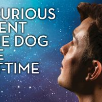 CCM Presents The Curious Incident of the Dog in the Night-Time