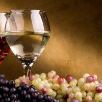 Winter Wine Tasting and Art Show