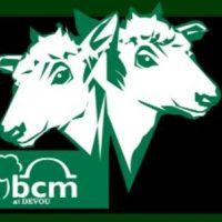 **POSTPONED** Behringer-Crawford Museum's 2020 Two-Head Calf Awards