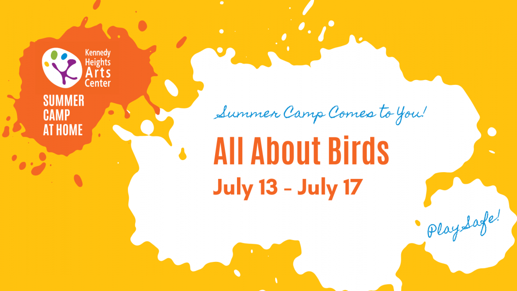 All About Birds, Summer Camp at Home