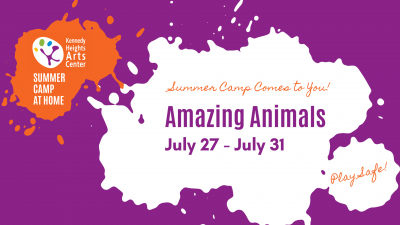 Amazing Animals, Summer Camp at Home