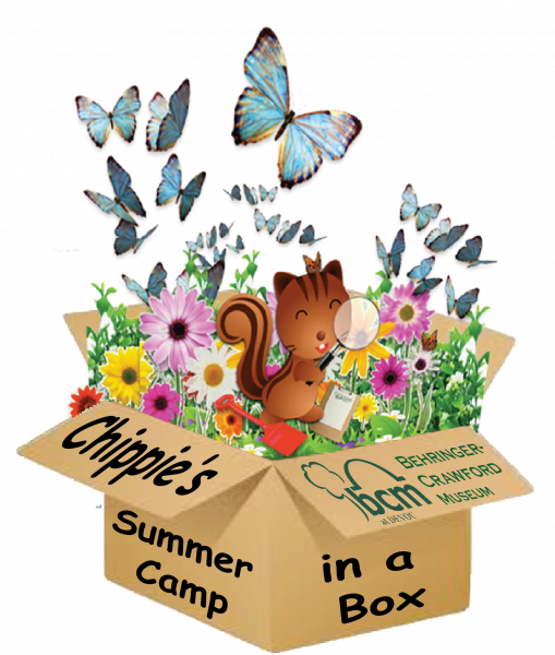 Chippie Summer Camps in a Box