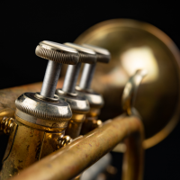 Fall Jazz Series | Featuring Brian Hogg Quartet